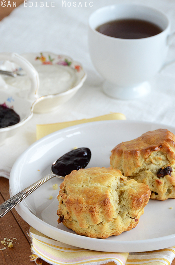 Cherry-Vanilla Sour Cream Scones with Vanilla Cream Spread 2