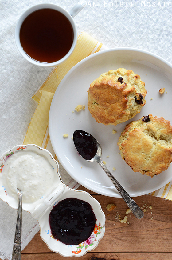 Cherry-Vanilla Sour Cream Scones with Vanilla Cream Spread