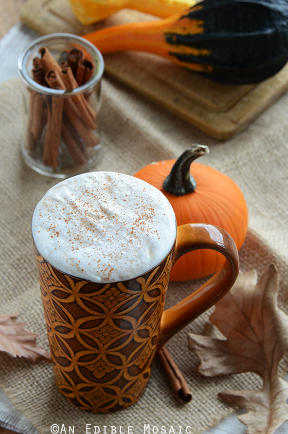 Sugar-Free Pumpkin Spice Syrup {For Lattes and More} 2
