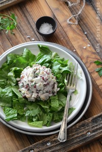 Cranberry Walnut Chicken Salad with Vintage Fork on White Plate