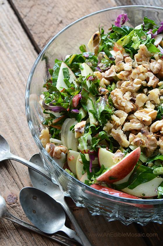 Apple-Walnut Rainbow Chard Salad 3