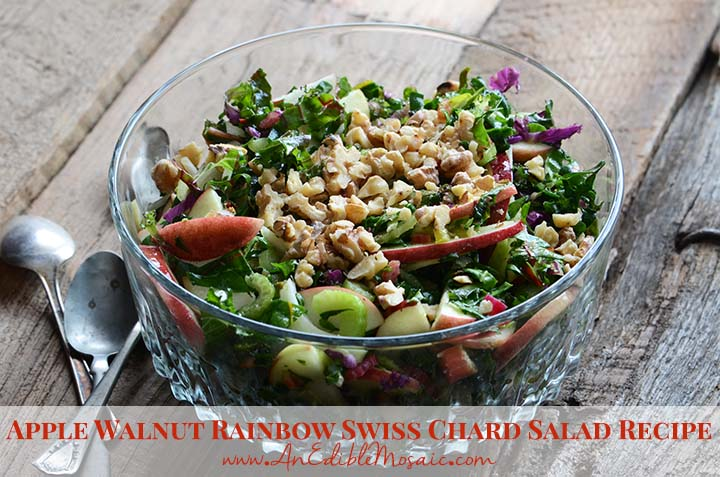 Apple Walnut Rainbow Swiss Chard Salad Recipe An Edible Mosaic