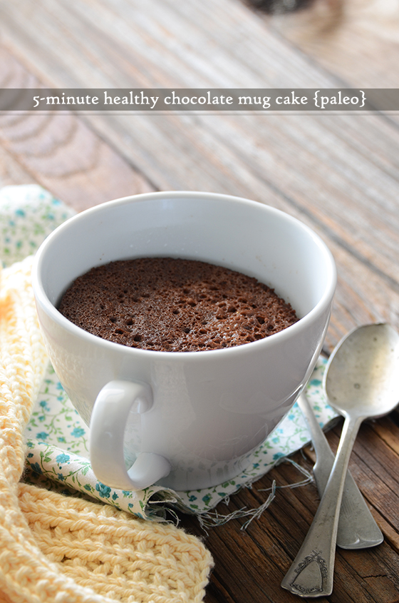 5-Minute Healthy Chocolate Mug Cake {Paleo}