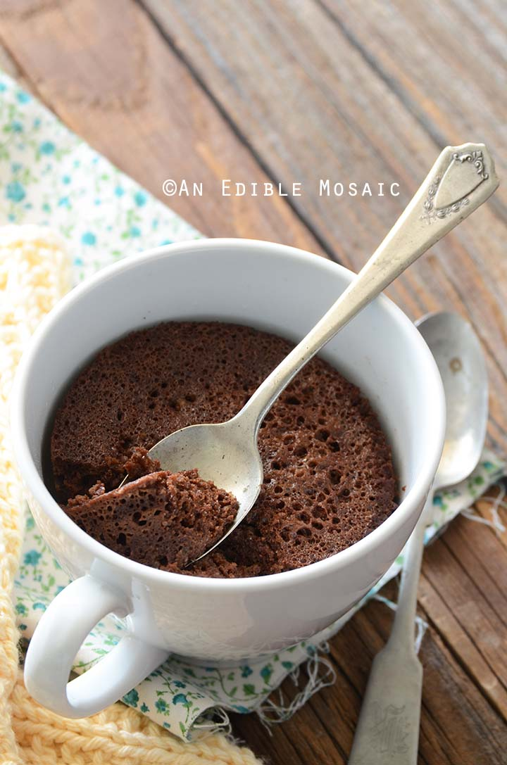 Close Up of Healthy Chocolate Mug Cake Showing Texture