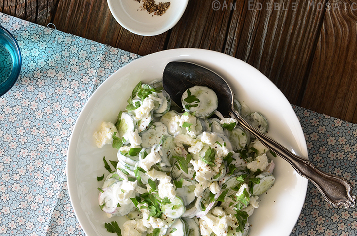 Creamy Cucumber Salad with Goat Cheese and Dill 5