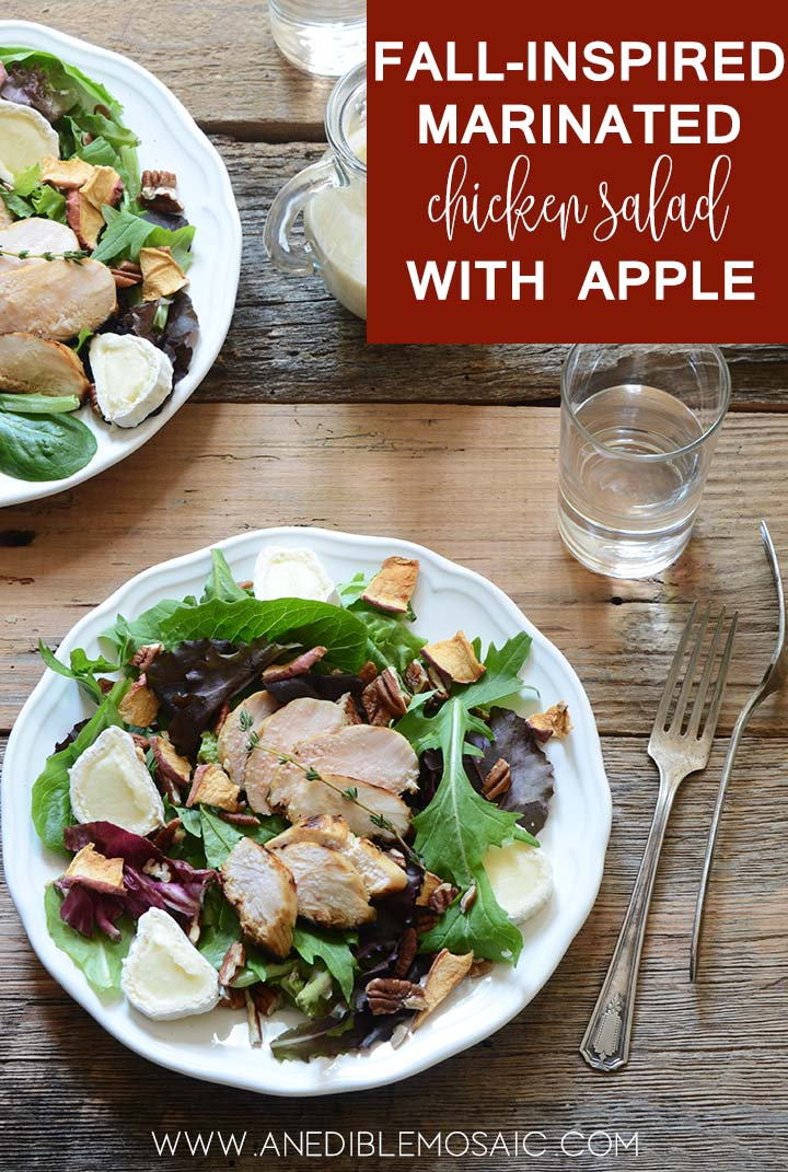 fall inspired marinated chicken salad with apple