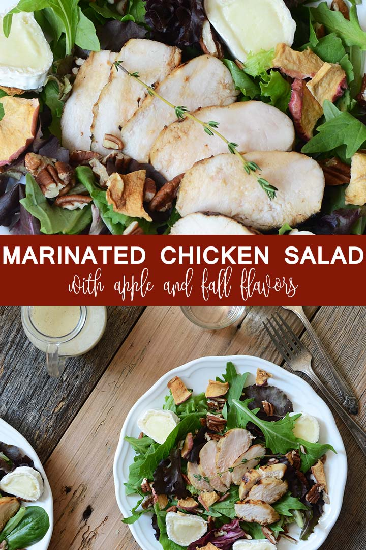 marinated chicken salad with apple pin