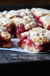Front View of Easy Cranberry Oatmeal Bars Recipe