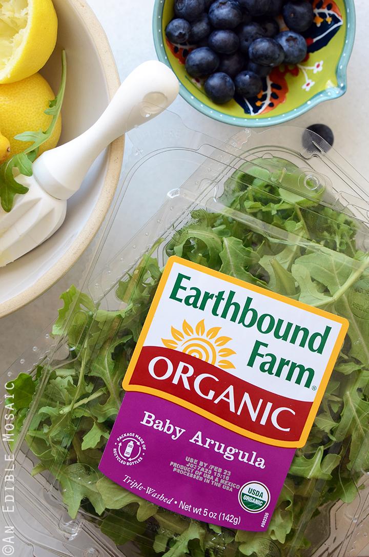 Earthbound Farms Organic Salads Earthbound Farm Organic Baby