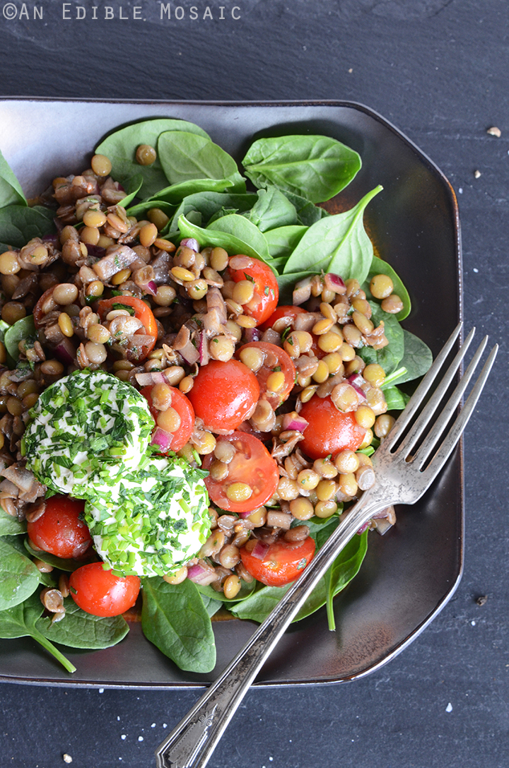 Lentil Salad with Herbed Goat Cheese and Balsamic Vinaigrette