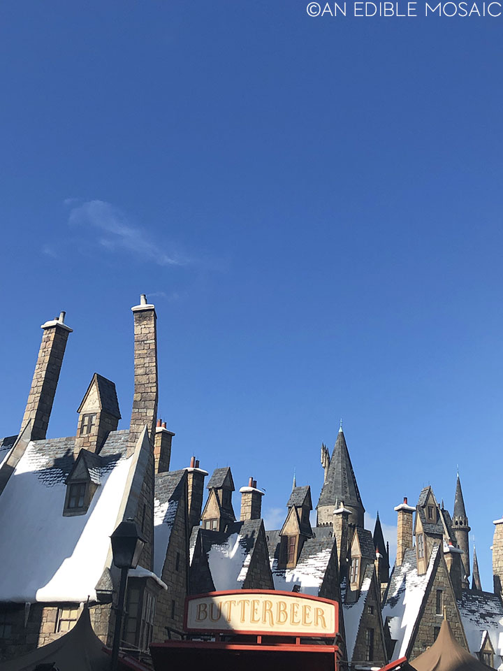 hogsmeade rooftops and butterbeer sign