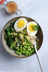 Japanese Power Bowl with Quick Miso Vinaigrette 1
