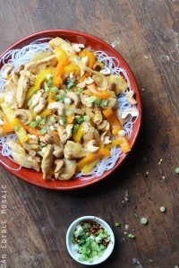 Soy Sauce Orange Cashew Chicken with Noodles