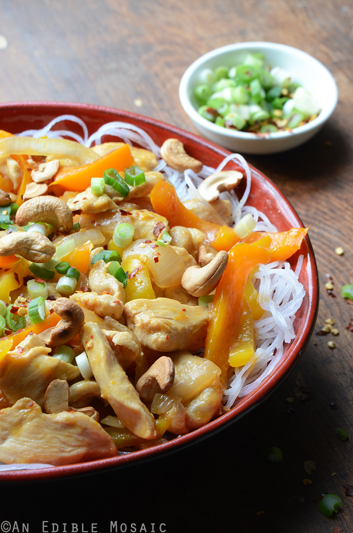 Soy Sauce Orange Cashew Chicken with Noodles 2