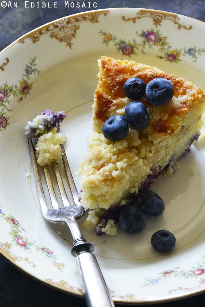 Close Up of Blueberry Coffee Cake Recipe on Flowered Dish with Vintage Fork
