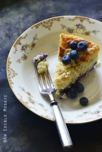 Crumble-Topped Blueberry Buttermilk Coffee Cake Metal Background Front View
