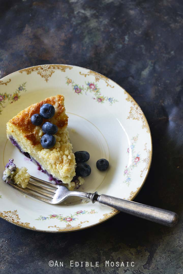 Crumble-Topped Blueberry Buttermilk Coffee Cake Metal Background Front View Vertical Orientation Showing Side of Cake