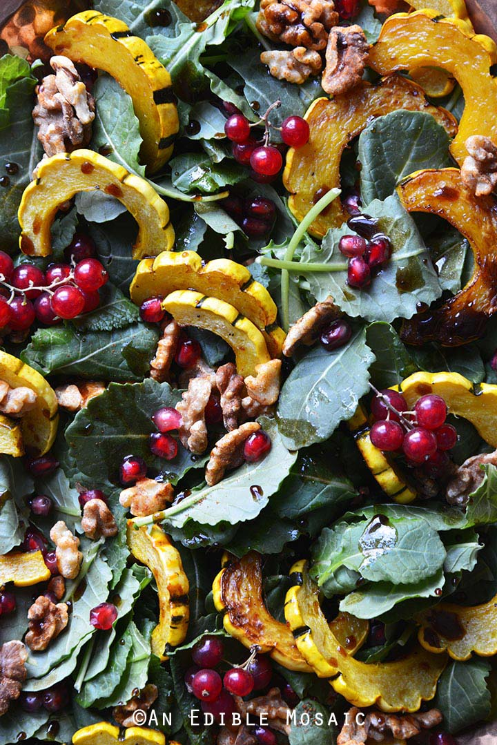 Close Up of Roasted Winter Squash Salad with Spiced Walnuts, Red Currants, and Pomegranate Balsamic Vinaigrette