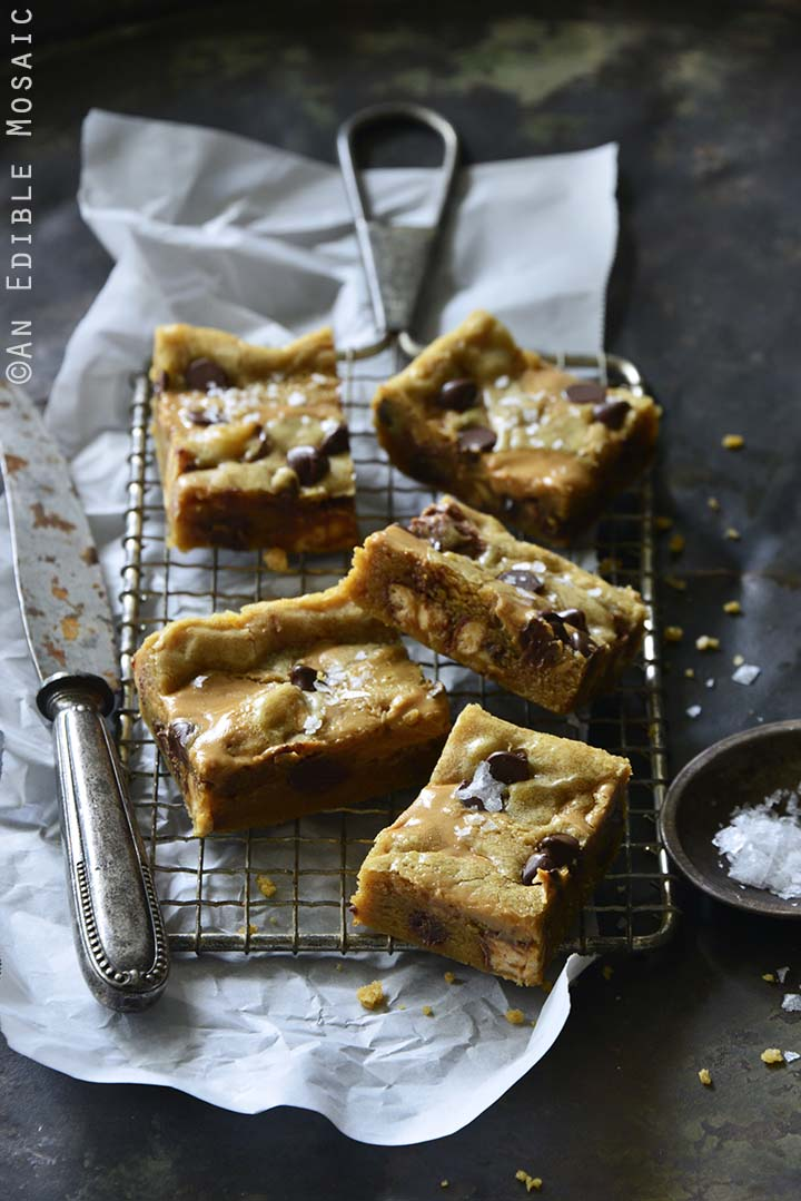 Salted Peanut Butter and Chocolate Snickers Brown Butter Blondies Front View Vertical Orientation