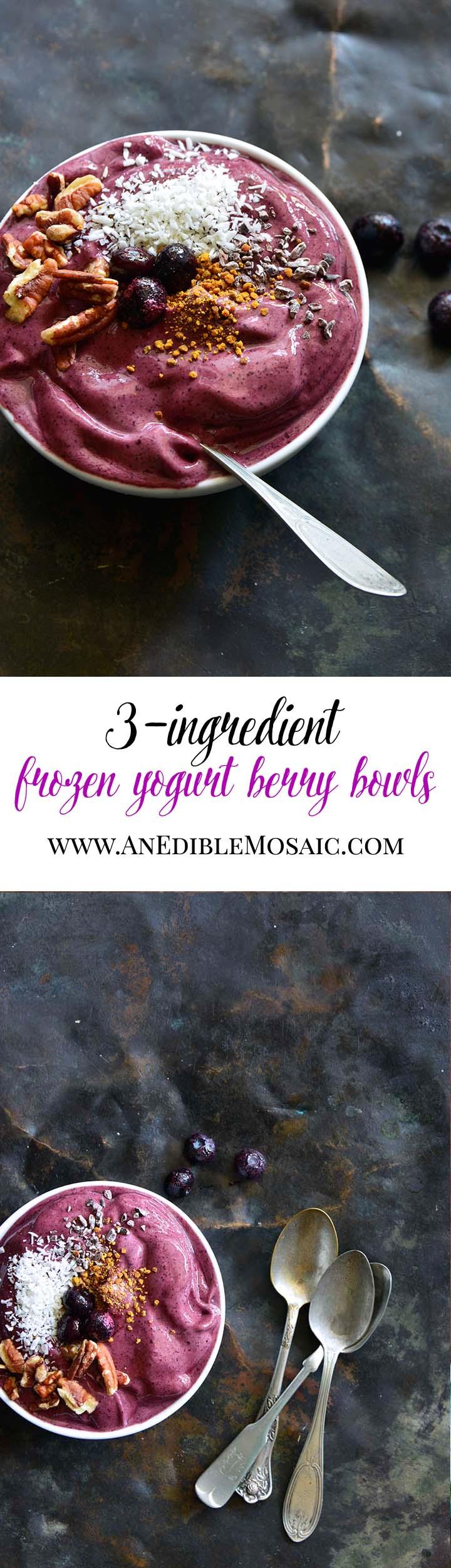 3-Ingredient Frozen Yogurt Berry Bowls Long Pin