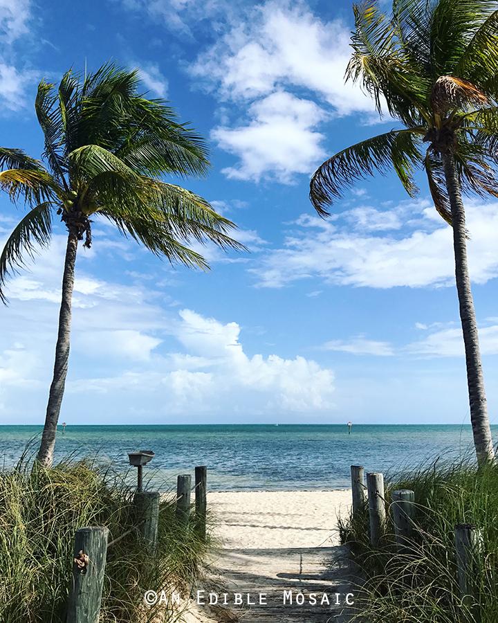 Higgs Beach in Key West