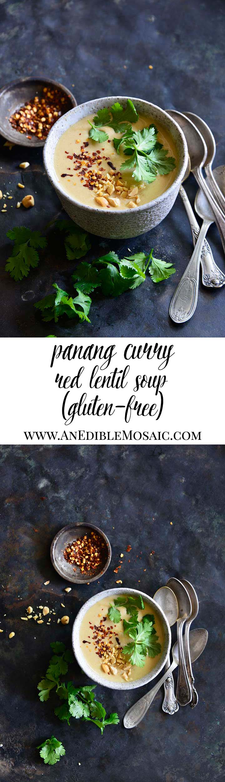 Panang Curry Red Lentil Soup Long Pin
