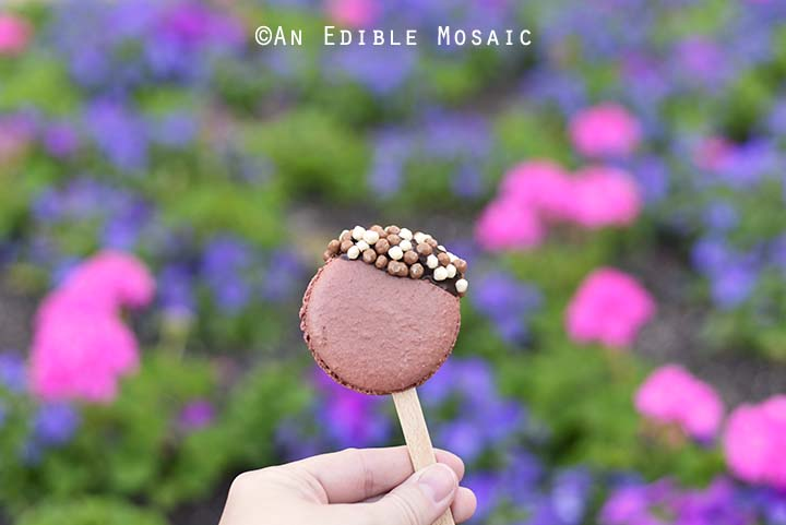 Chocolate Macaron from Fleur de Lys