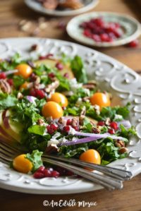 Close Up Front View of Festive Christmas Salad Recipe on Wooden Table