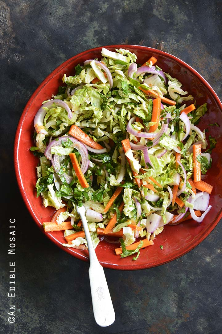 Quick Pickled Slaw in Red Bowl on Metal Tray