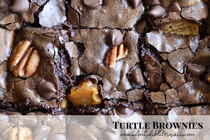 Turtle Brownies Recipe with Description