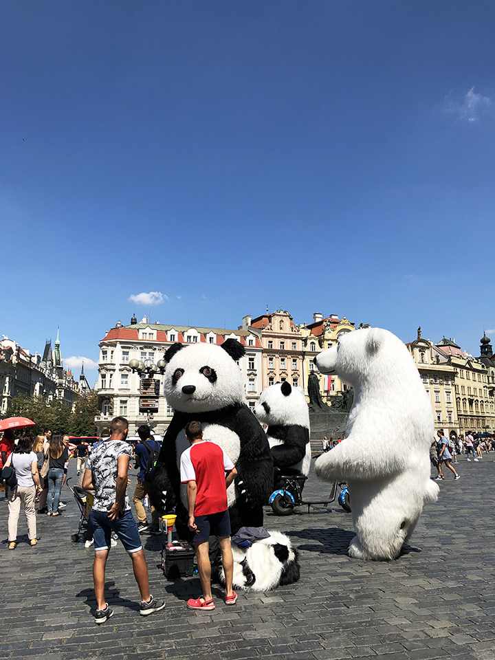 Giant Bears Old Town Square Prague