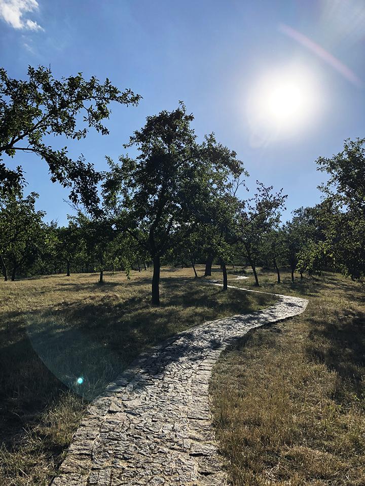 Walking Up Petrin Hill