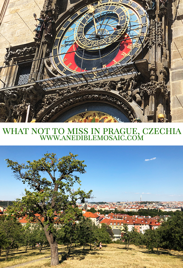 What Not to Miss in Prague Czechia