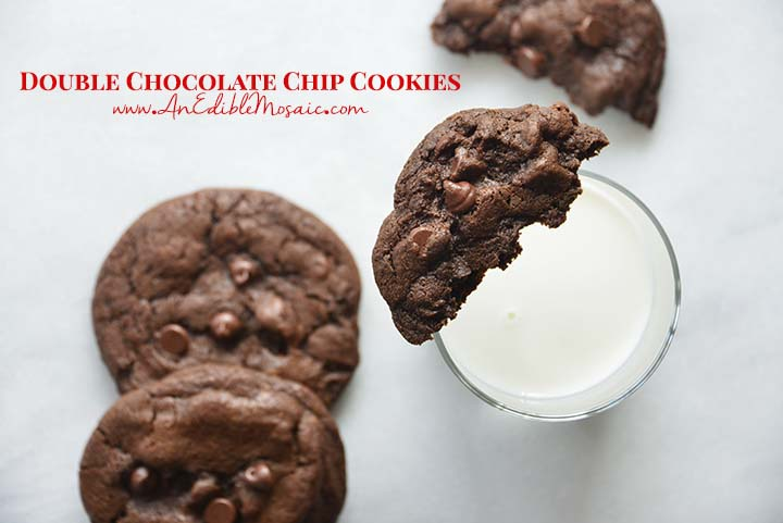 Double Chocolate Chip Cookies with Description