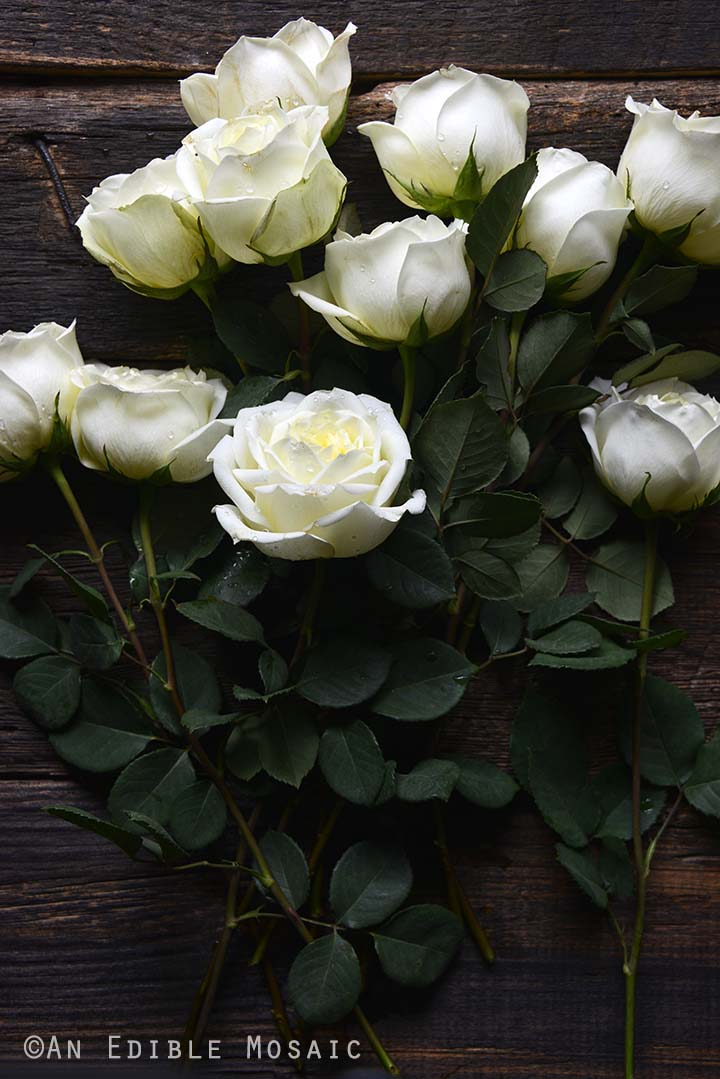 White Roses on Dark Wood Background