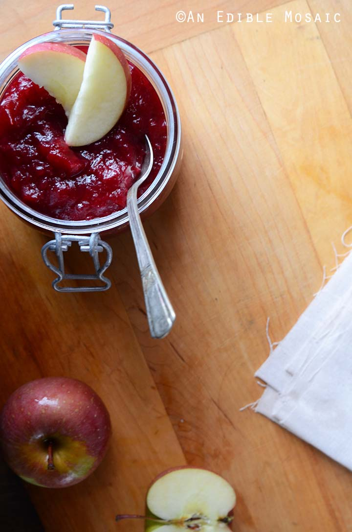 Cranberry Apple Sauce with Fresh Apple on Wood Table
