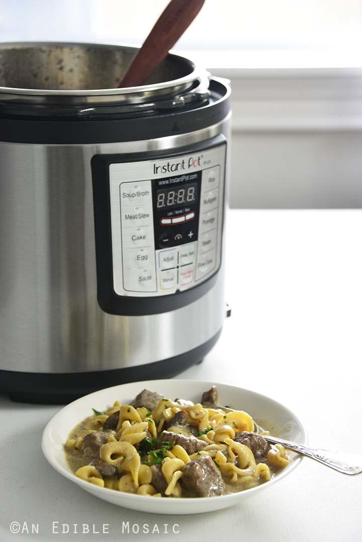 Beef Stroganoff with Instant Pot