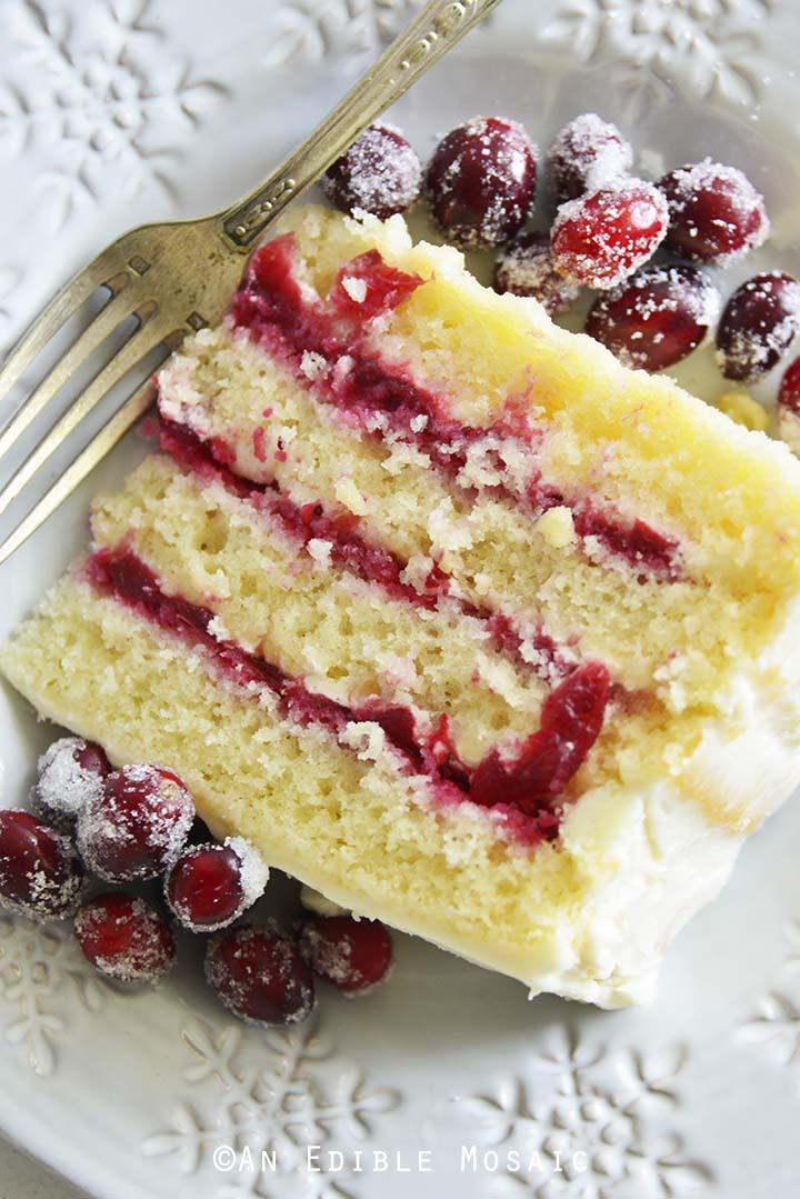 Close Up of Slice of Cranberry Cake