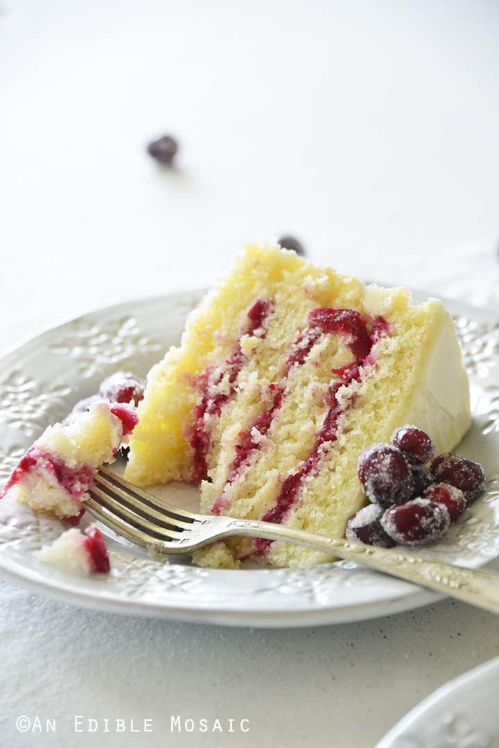 Front View of Cranberry Cake Slice