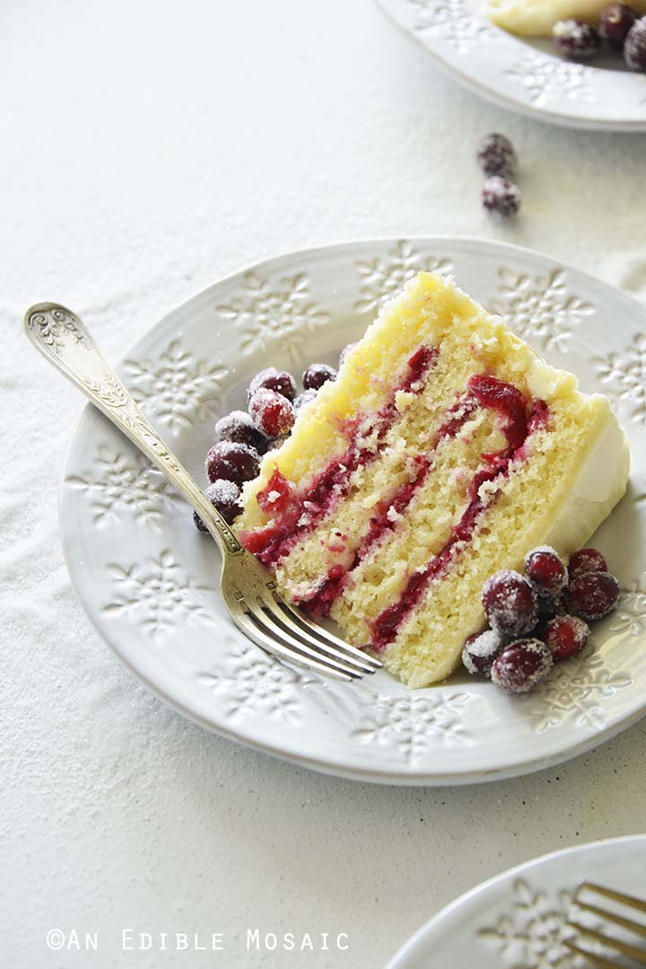Slice of Cranberry Cake