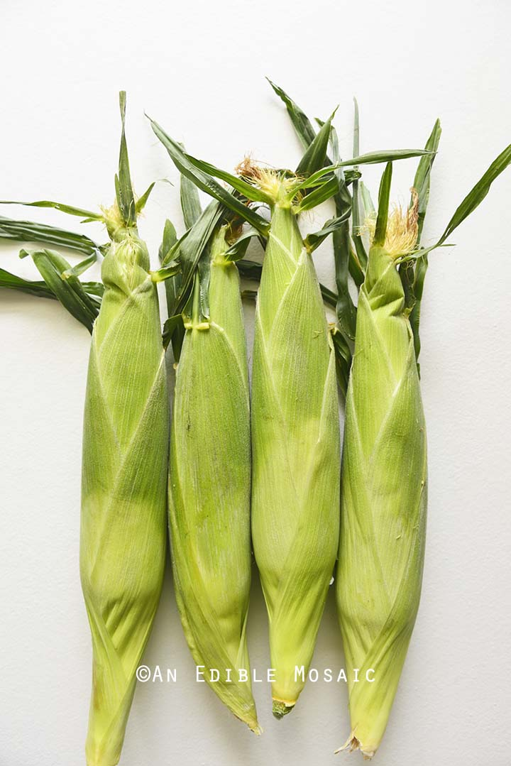 Ears of Corn on White Table