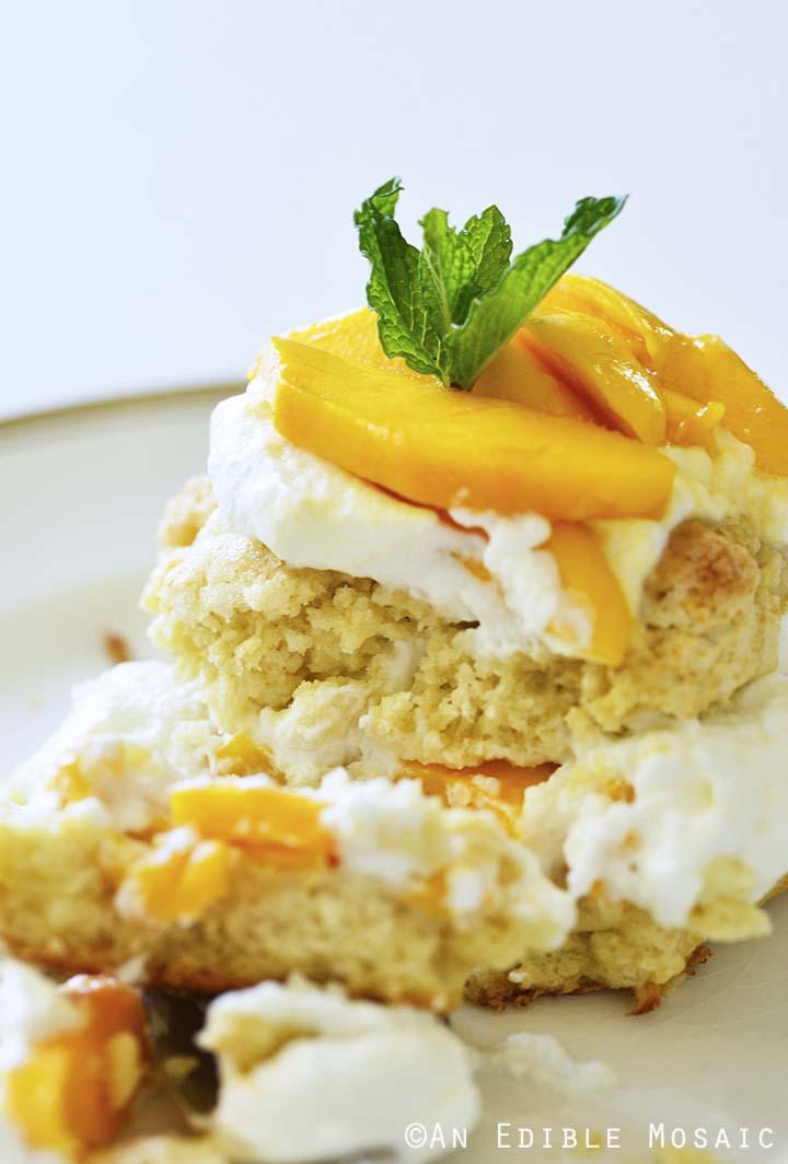 Front View of Mango Shortcake