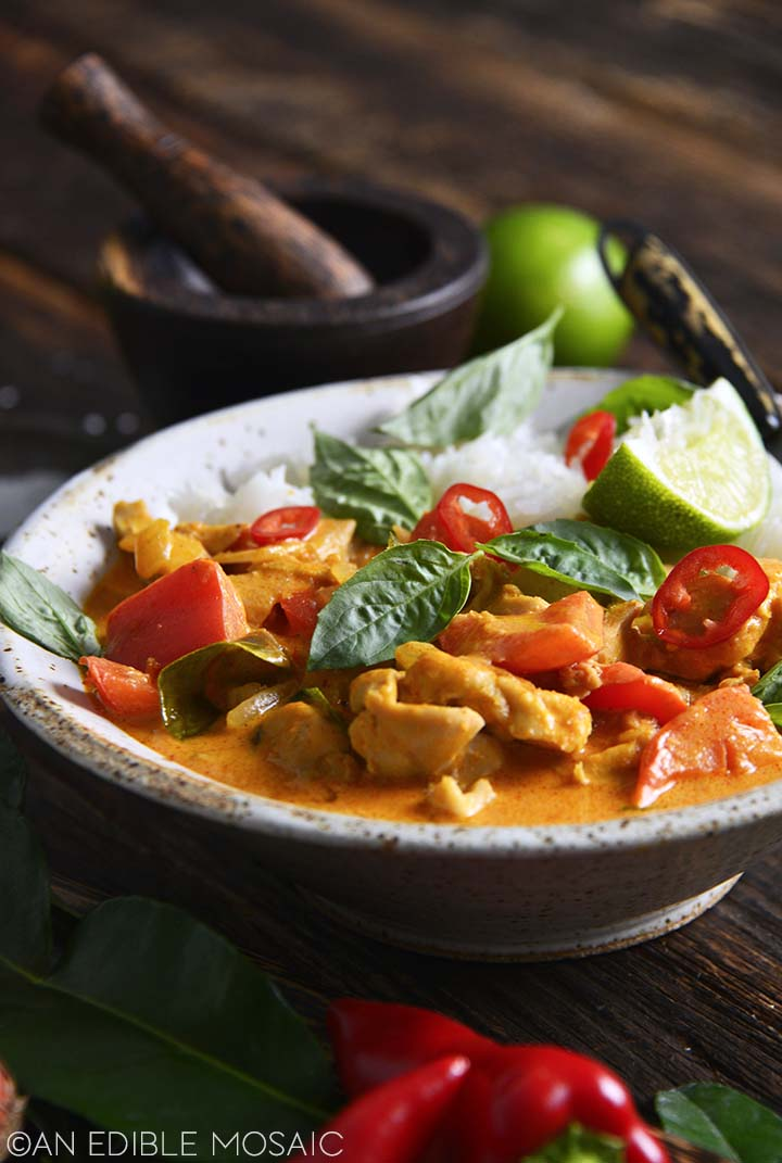 Side View of Thai Panang Curry