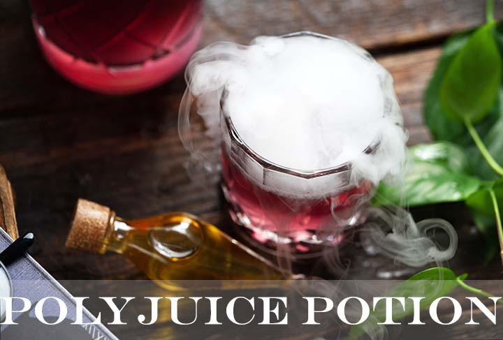 polyjuice potion with description