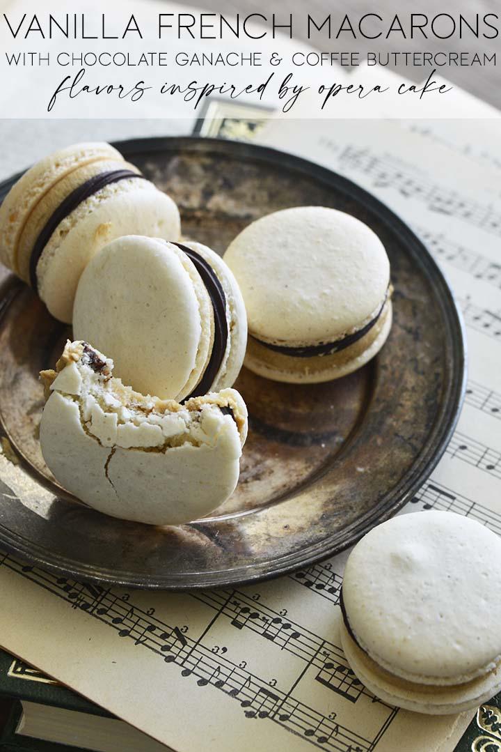 vanilla french macarons graphic